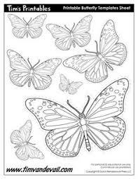 free butterfly printable butterfly drawing butterfly and