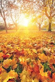 october half term breaks find cottage holidays