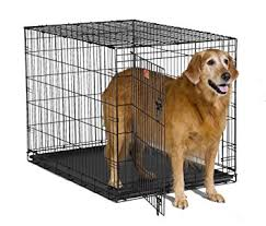 black friday dog crate amazon com midwest 42