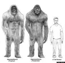 i don u0027t believe in skepticism but i believe in bigfoot u2013 xenofiles