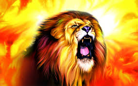 male lion wallpapers hd lion roar wallpaper animals wallpaper