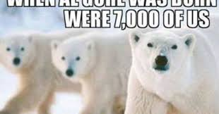 Polar Bear Meme - every liberal should see this hilarious global warming meme