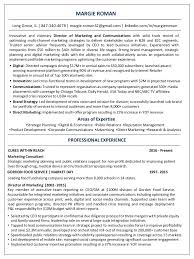 Analytics Consultant Resume Digital Marketing Consultant Resume Virtren Com