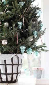 434 best coastal holidays images on pinterest christmas ideas
