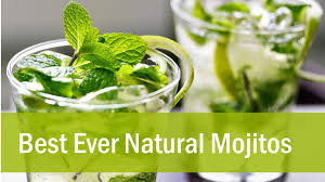 bacardi mojito recipe mojitos raw food recipe youtube