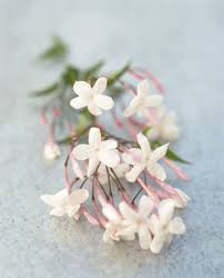 fresh jasmine flowers a favorite of mine for cascading bouquets