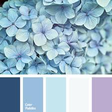 Blue Shades Blue Color Palettes Cold Shades Color Matching Color Palette