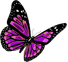 colorful flying butterfly clipart u0026 colorful flying butterfly clip