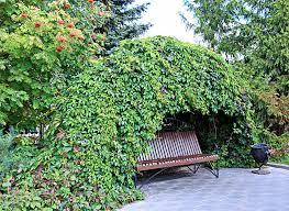 Garden Bench Ideas Garden Bench Ideas
