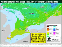 emerald ash borer map bioforest technologies inc emerald ash borer