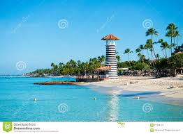 lighthouse palm trees stock photos 1 196 images
