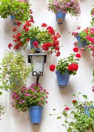 the 25 best garden pots ideas on pinterest potted plants