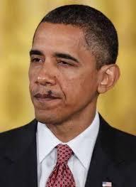 Obama Face Meme - create meme fly on the face of barack obamy fly on the face of