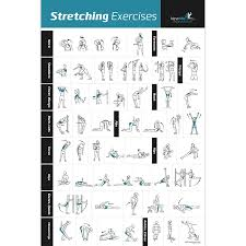 amazon com stretching exercise poster laminated shows how to