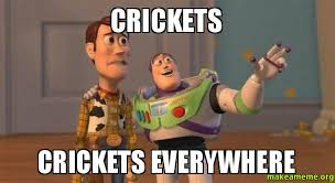 Crickets Meme - crickets crickets everywhere make a meme