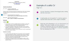 Types Of Skills Resume 100 Resume Types Skills Resume Sample Technical