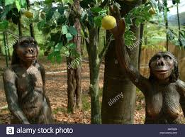 adam and eve in paradise stock photo royalty free image