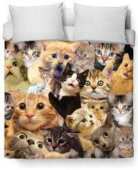 surprised cats duvet cover u2013 cats are so cool