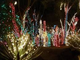 How To Decorate Outdoor Trees With Lights - lighted cactus outdoor light decoration u2022 lighting decor