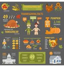 day interesting facts in infographic vector image