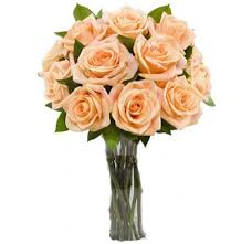Long Stem Rose Long Stem Roses Wholesale Bulk Long Stem Roses Long Stem Roses