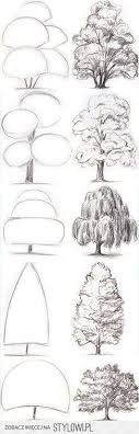 tree drawing ideas sketches of different kinds of trees