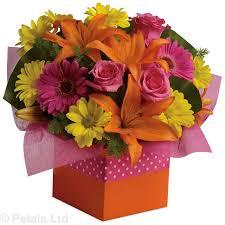 jen s flowers