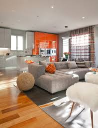 Orange Striped Curtains San Francisco Burnt Orange Sofa Living Room Contemporary With