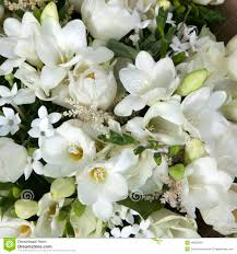 fleurs blanches mariage bouquet de mariage des fleurs blanches photo stock image 48822840