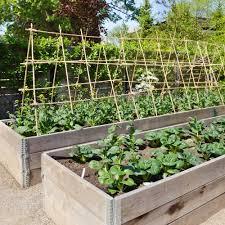 premier vegetable topsoil veg soil garden soil online topsoil