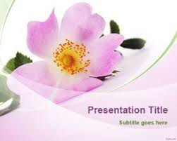 free flowers free flowers powerpoint templates