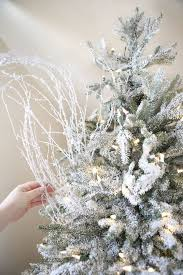christmas where do i take my christmas tree img 9921 the yellow