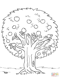 trees u0026 leaves coloring pages free coloring pages