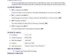 Sample Functional Resume Template Resume Templates Functional Functional Resume Template Pdf 10