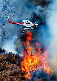 Wildfire Yukon by Forest Fire Research Questions The Wisdom Of Prescribed Burns