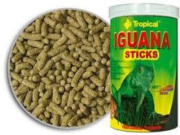 imágenes de iguanas verdes alimento en sticks para iguanas verdes adultas