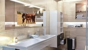 mirror bathroom tv bathroom mirrors with built in tvs sensational idea tv the mirror