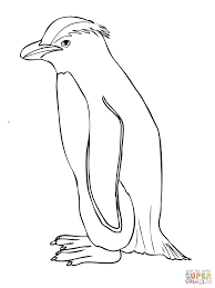 penguin printable coloring pages funycoloring