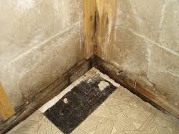 basement leaking where wall meets floor basement ideas