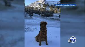 snow gear in demand at walnut creek sports basement as california
