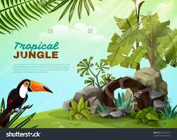 tropical jungle landscape design composition rock stock vector