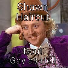 Shawn Meme - dope meme quickmeme