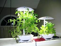 grow lights for indoor herb garden plant grow lights lowes green grow led grow lights led plant grow