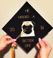 graduation cap graduation pugs college college pinterest
