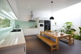 cuisine rectangulaire design interieur plantes de cuisine disposees sol table