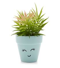 Mint Green Home Decor Mint Green Artificial Face Plant Pot Plants Yard Ideas And Planters