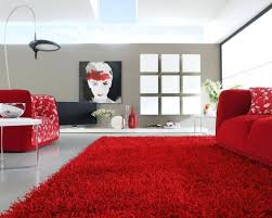 Black Area Rugs Grey And Red Area Rugs White Black Amazing Could Your Inspiration