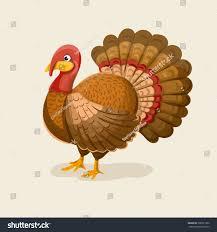 Thanksgiving Bird Live Turkey Vector Illustration Bird Thanksgiving Stock Vector