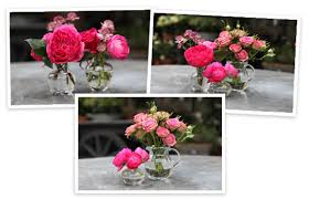 Small Square Vases Flower Arranging By Vase Goop