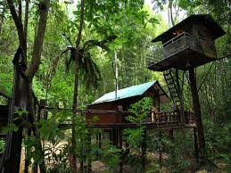 best price on khaosok treehouse resort in khao sok suratthani
